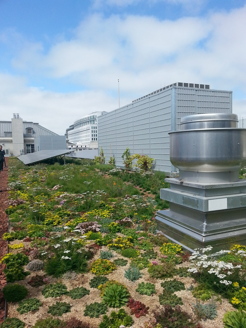 Green Roof San Francisco The Registry real estate